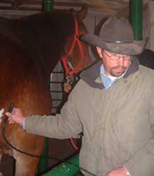 equine_digital_ultrasound