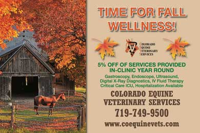 Fall Wellness